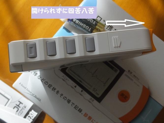 DSCF4338_1.jpg