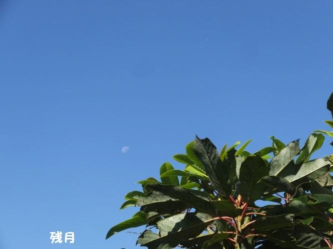 DSCF5488_1.jpg