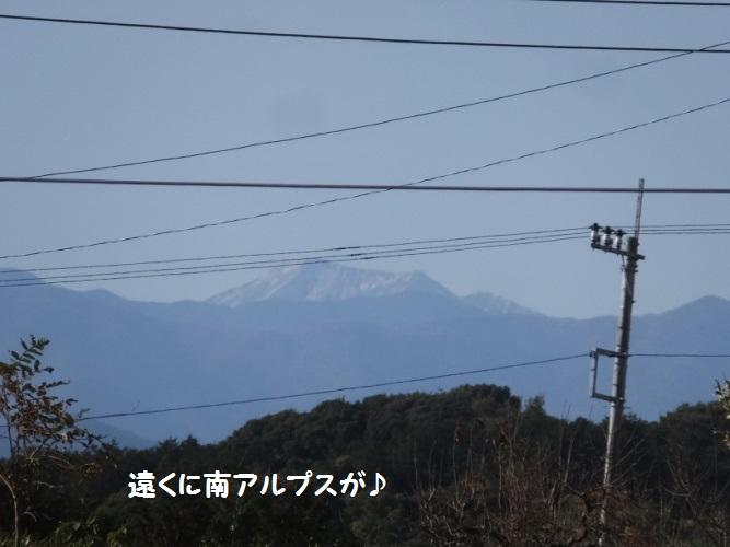 DSCF6460_1.jpg