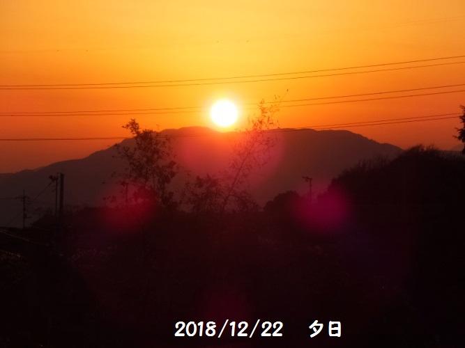 DSCF7297_1_20181223091659b69.jpg