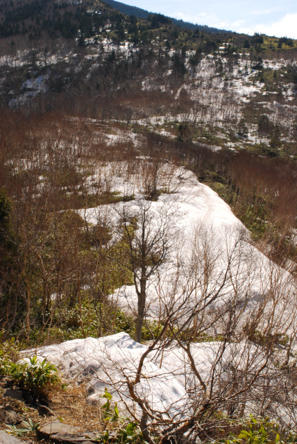 四阿山_残雪の登山道