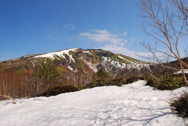 大明神沢の向こうに根子岳の山頂