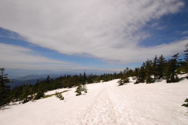 四阿山の下り_雪に覆われた樹林帯