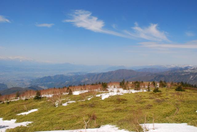 小根子岳の山頂から麓の眺め_広い笹原
