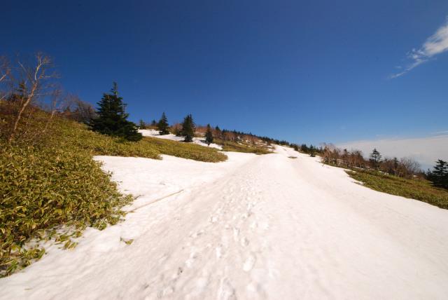 根子岳から小根子岳へ_残雪が眩しい