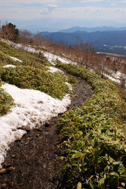 根子岳の登山道_雪融けでドロドロ