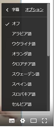 subtitles_options.png