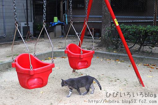 猫写2017(064)