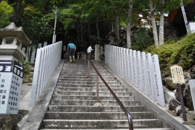 はい、階段 ^^;