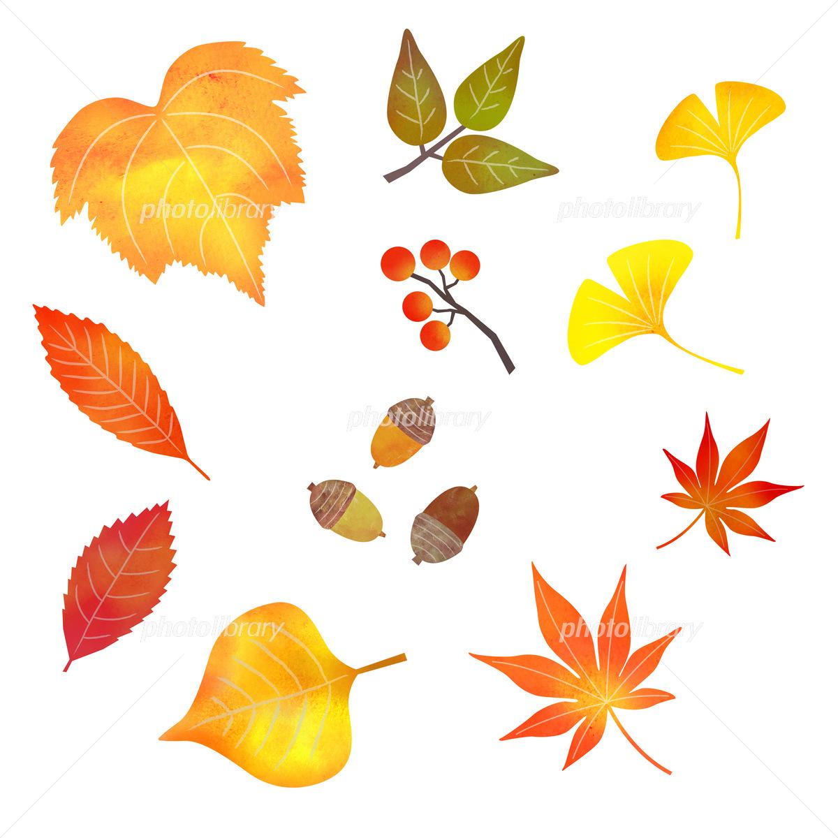 エコでナチュラルな自然イラスト素材 落ち葉のイラスト素材一覧