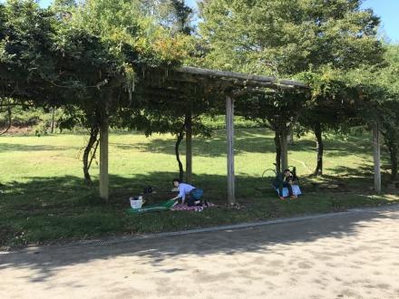 170924mikawakougen trailrunninglace2017 (11)