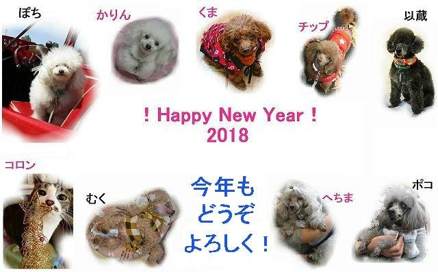 2018用写真e