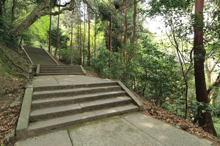 奥社の階段2-Ss