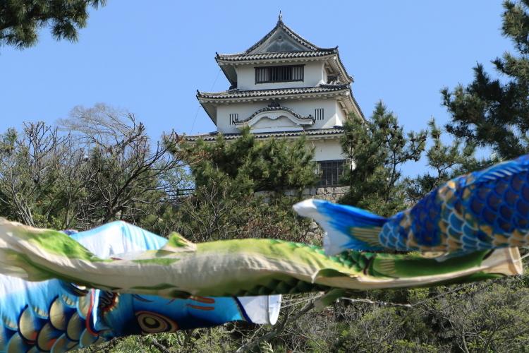 丸亀城とこいのぼり2-Ss