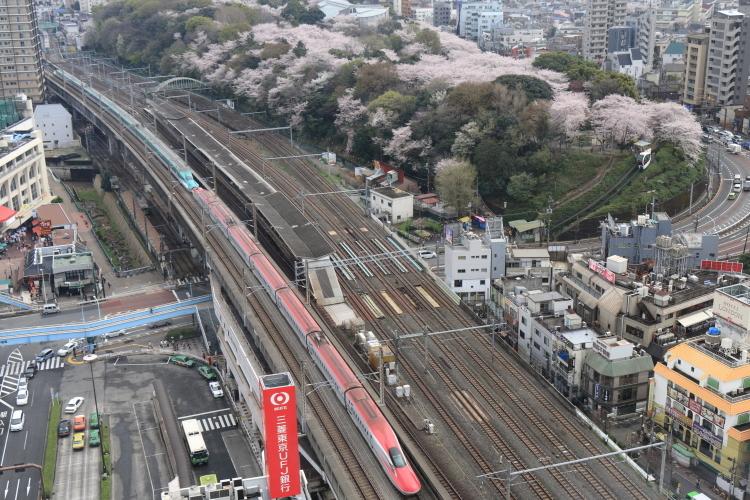飛鳥山&北海道新幹線-Ss