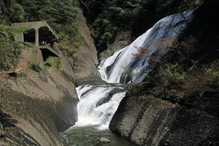 観瀑台2-Ss