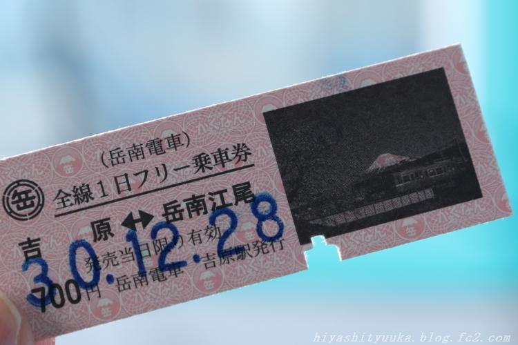 5Z2A3278 岳南電車SN