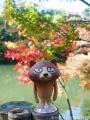 紅葉を撮りに高岡古城公園へ7