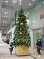 富山駅のクリスマスツリー点灯式の日7