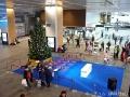 富山駅のクリスマスツリー点灯式の日8