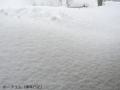 また雪がドーン