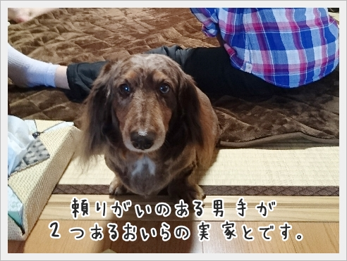 fc2_2017-05-12_11.jpg