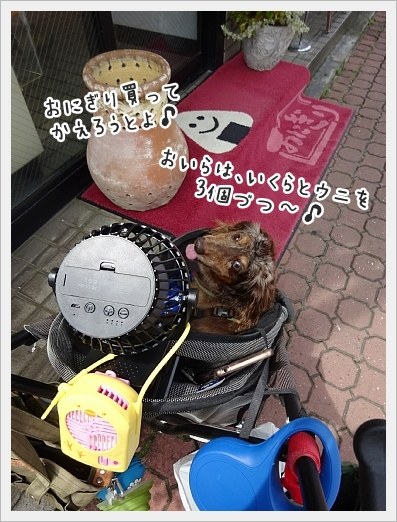 fc2_2017-08-01_10.jpg
