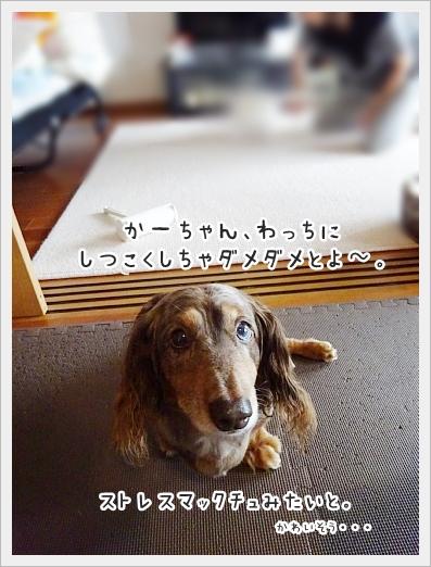fc2_2017-08-30_09.jpg
