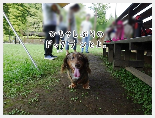 fc2_2017-09-11_01.jpg