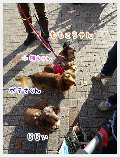 fc2_2017-11-27_02.jpg