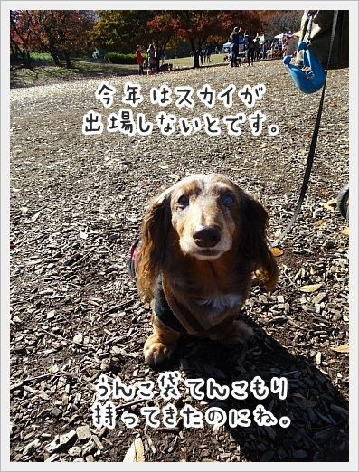 fc2_2017-11-28_02.jpg