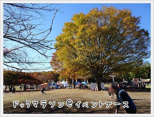 fc2_2017-11-28_03.jpg