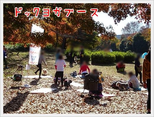 fc2_2017-11-28_06.jpg