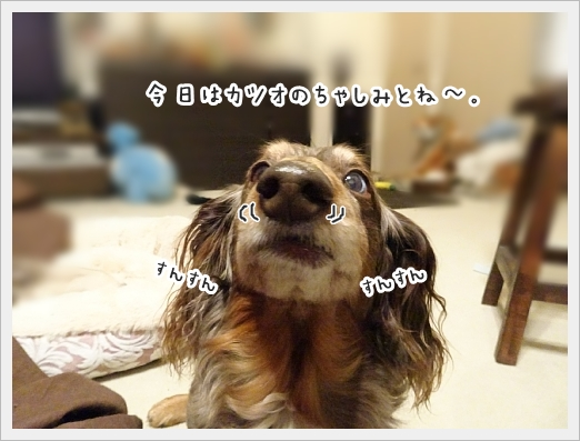 fc2_2017-12-15_01.jpg