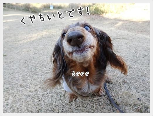 fc2_2017-12-28_04.jpg