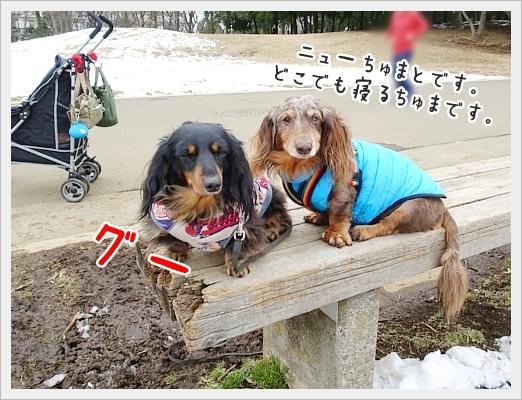 fc2_2018-01-31_05.jpg