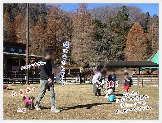 fc2_2018-02-01_06.jpg