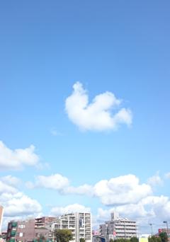 171016 sky