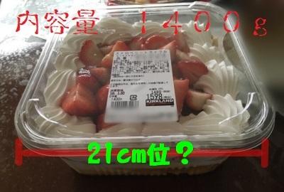 ビガーパンケーキ01