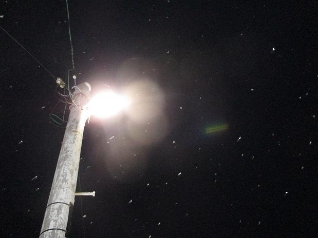 夜空雪音威子府