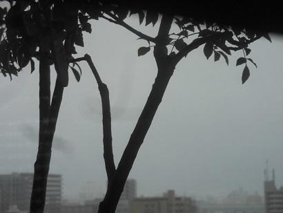 1月10日悪天候