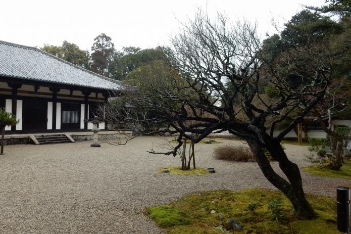 秋篠寺 029