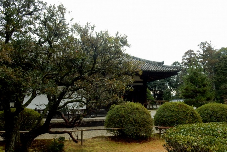 秋篠寺 052