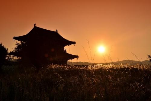 平城宮跡夕陽2