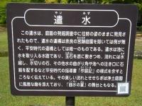 2017-06-24平泉・毛越寺あやめ祭り170