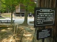 2017-06-24平泉・毛越寺あやめ祭り186