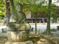 2017-06-24平泉・毛越寺あやめ祭り185