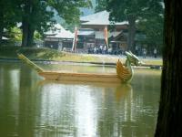 2017-06-24平泉・毛越寺あやめ祭り196