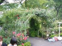 2017-06-11花巻温泉のバラ園254