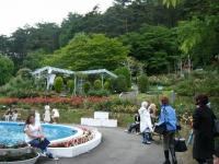 2017-06-11花巻温泉のバラ園253